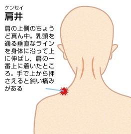 肩こり・腰痛のツボ